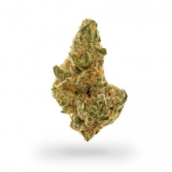 Silicon Valley OG
