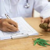 Medical Cannabis in Florida