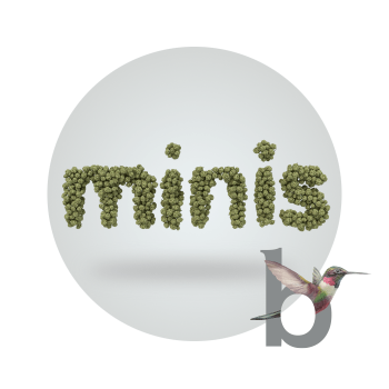 Mojito by Binske Minis